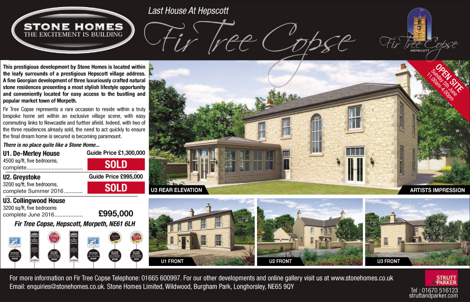 Fir Tree Copse advert